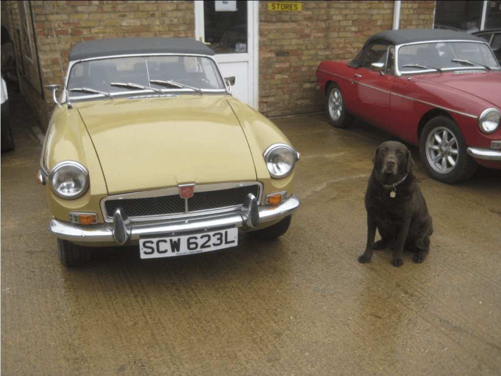 Cars for Sale - The MGB Hive